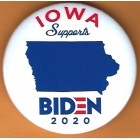 Joe Biden Campaign Buttons (13)