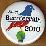 D2G - Elect Berniecrats 2016 Campaign Button