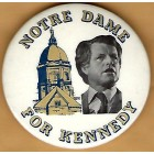 Ted Kennedy Campaign Buttons (22)