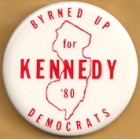 Ted Kennedy Campaign Buttons (18)
