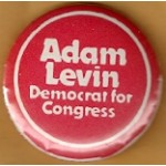NJ 23N - Adam Levin Democrat for Congress Campaign Button