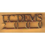 NJ 43E - UC DEMS 2000 Lapal Pin