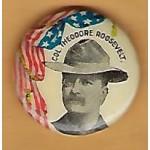 T.R. 2E - Col. Theodore Roosevelt Campaign Button