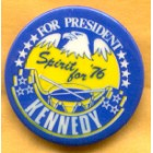 Ted Kennedy Campaign Buttons (11)