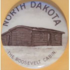 Theodore Roosevelt Campaign Buttons